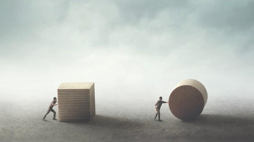 TBI Distributor's Survey 2020 – Insider insight